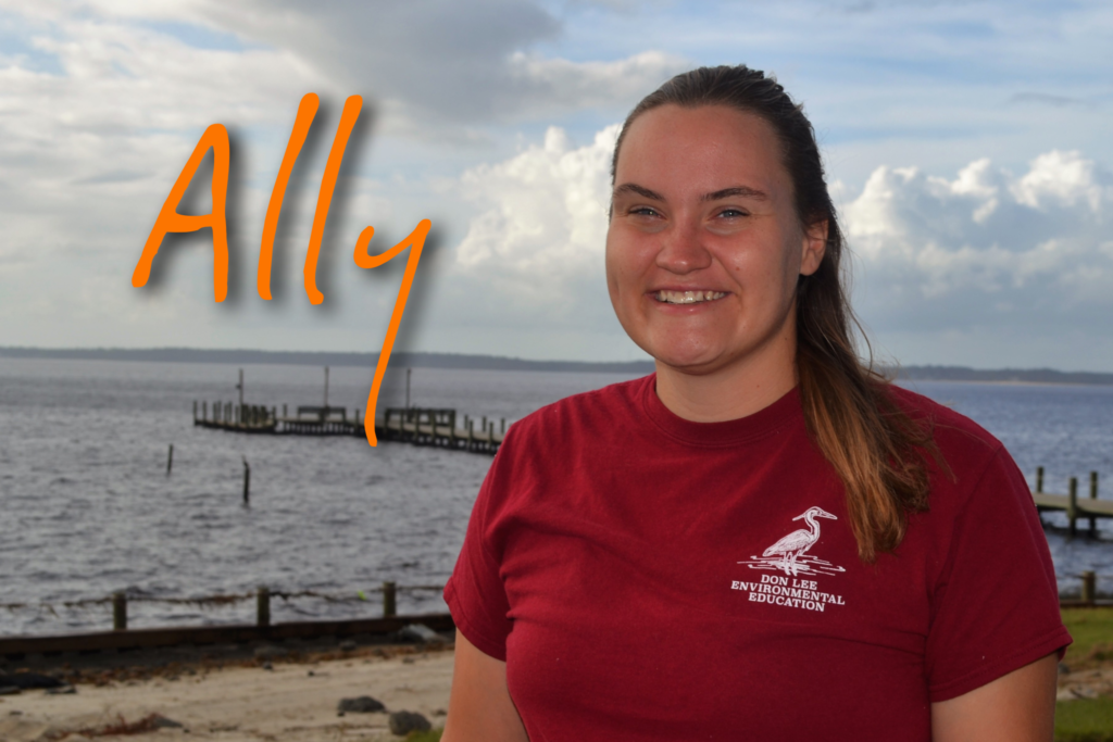 Hi! My name is Ally Ballinger. I recently graduated from Iowa State University with a degree in Biology and this is my 3rd season working at camp. I love taking care of the animals at camp and digging in the fossil pit. My favorite sea animal is a whale because they rule the sea!