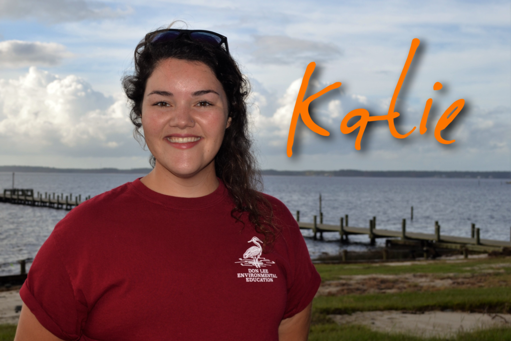 Hello, my name is Katie Lewia. I am the Environmental Education Coordinator here at Camp Don Lee. I am so excited to work with everyone this season. I have a degree from North Carolina State University and have been working at camp for 3 years now! My favorite sea creature is a mermaid because yes, they are real!