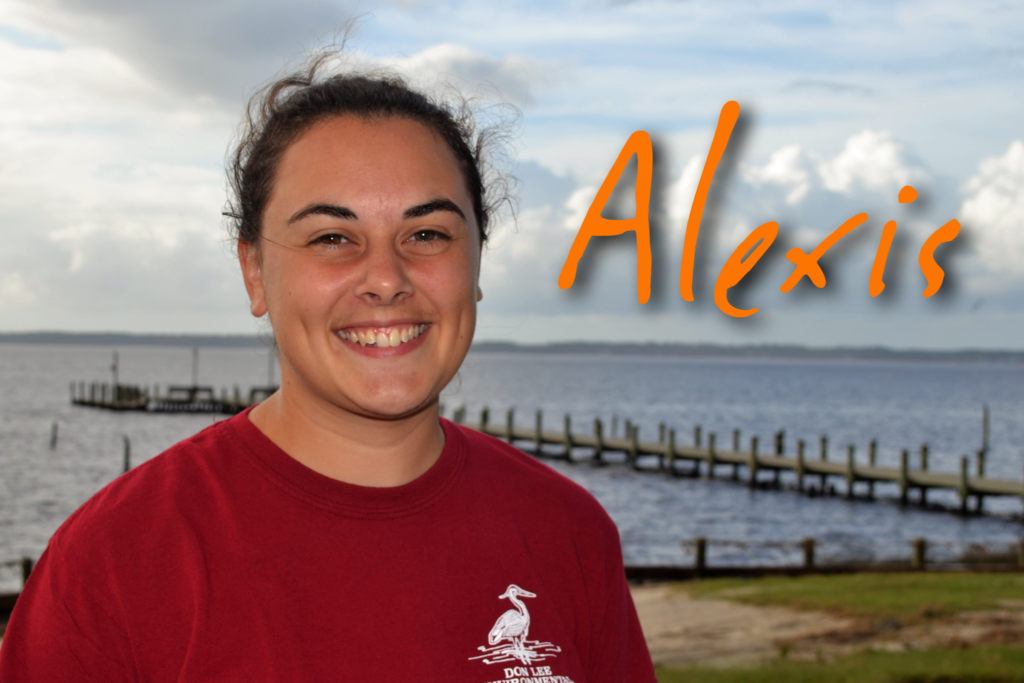 Hello! My name is Alexis VonBrockdorff. This is my second season on the Coastal Staff at Camp Don Lee. My favorite sea creature is a jellyfish! In my free time I love to hike and explore.