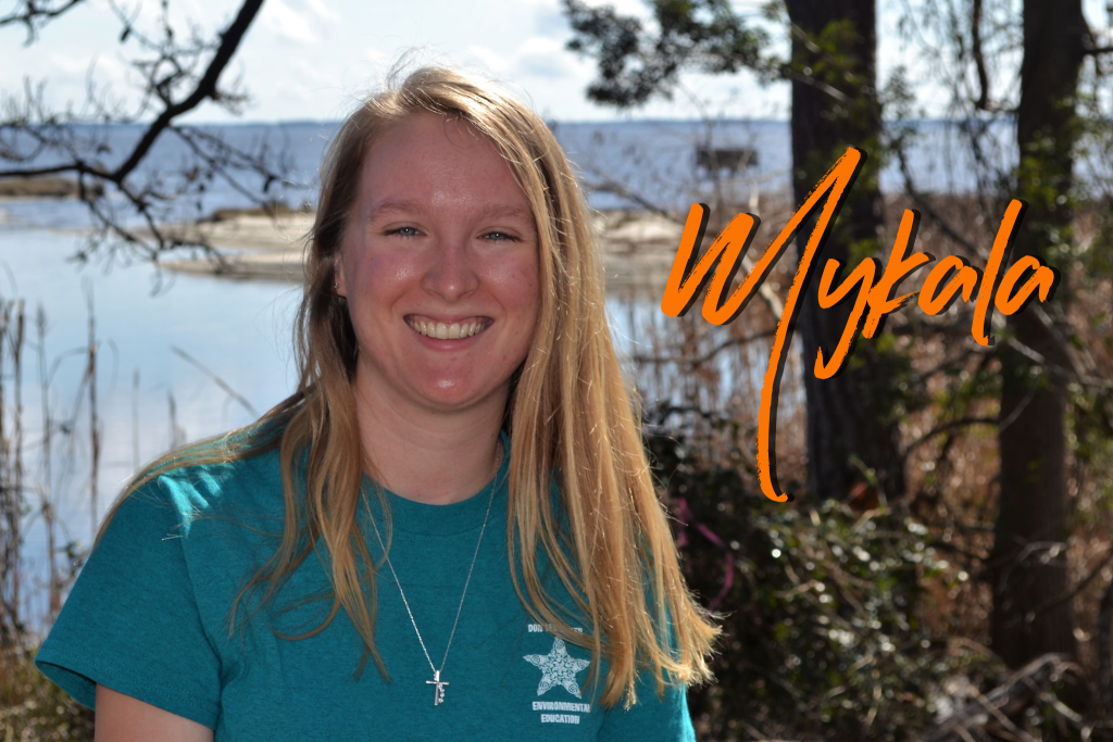 Is from Columbus, Ohio. This is her first season at Camp Don Lee, and she is super excited to share cool facts about nature and the different animals you might see here. Her favorite sea creatures are dolphins, and she loves to go birding around camp!